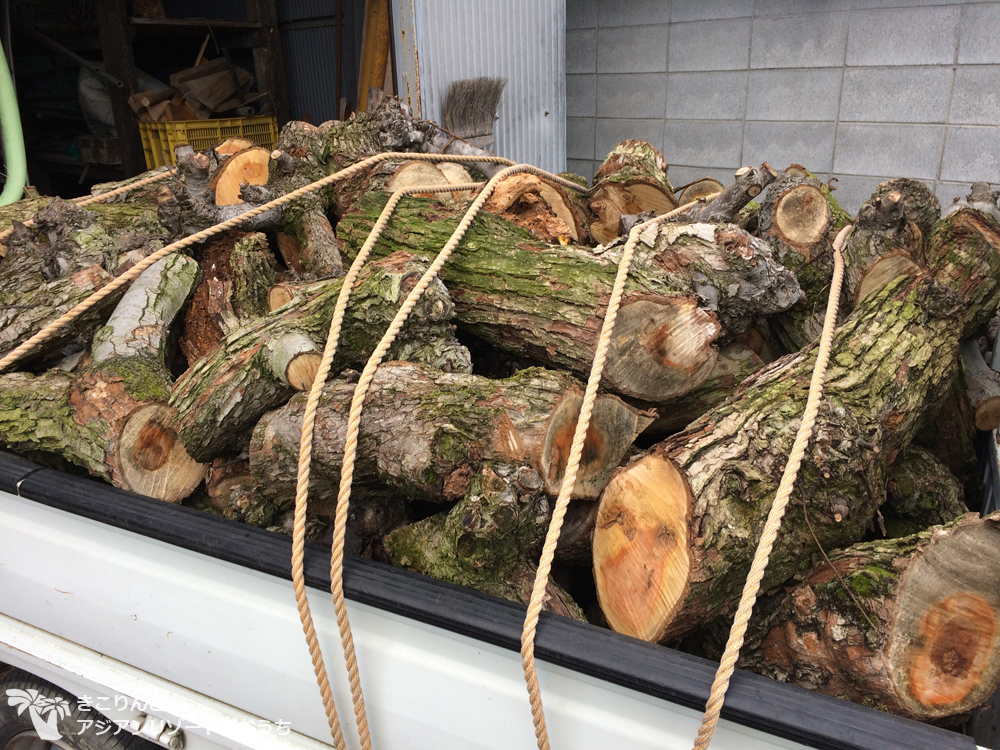 【薪活2017】梨の木をいただいてきました