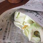 アジアンリゾートなインテリアと、花