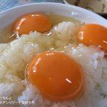 たまごかけご飯と、燻製たまご。美味しい卵のこと。