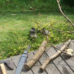 木だけは家にたくさんあるけれど・・難しい木工の宿題