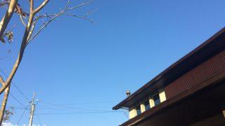 薪ストーブの煙突からの煙、実際のところ・・の続き