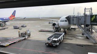 今からバリ島に行ってきます。