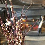 毎年この時期恒例の頼まれごと。桃の花×薪ストーブ