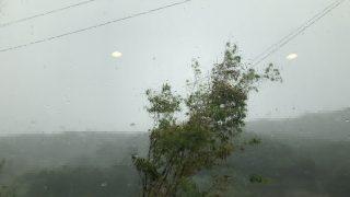台風の雨と吹き込み。軒の長さと窓の濡れ具合の関係。