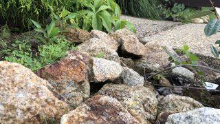 【外構で思う事】シンボルツリーの下の石ごろごろはやめておいた方がいいと思う。