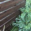 【外構トラブル】なぜこうなった?気になる木調フェンスの耐久性。
